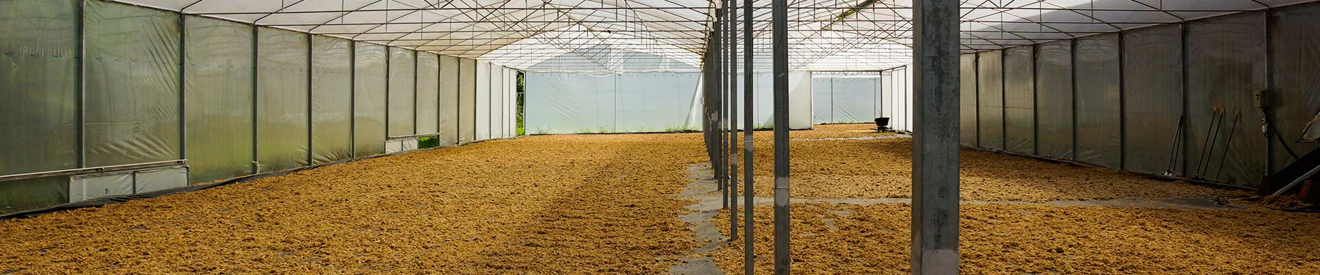 AgroFair-Projects-header-image-Yellow-Pallet