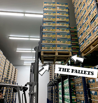 AgroFair-Yellow-Pallets-01