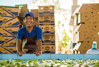 Agrofair-celebrates-25-years-of-fairtrade-bananas-01