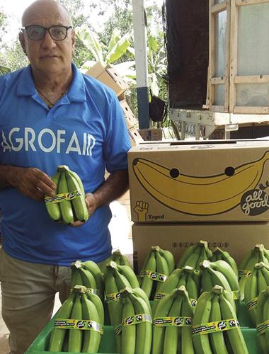 agrofair_all_good_banana_01